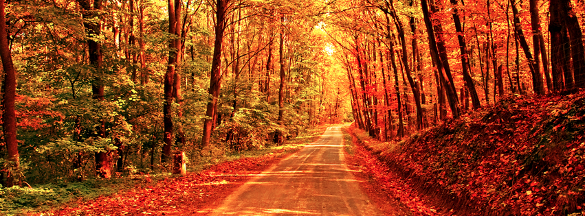 https://dosenea.files.wordpress.com/2014/10/fall-autumn-road-facebook-timeline-cover.png?w=851