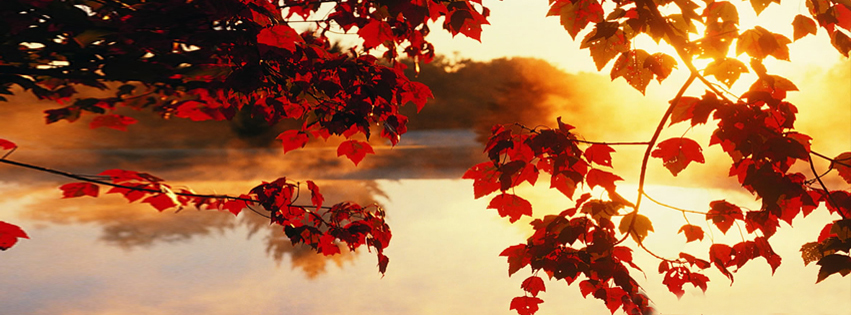 https://dosenea.files.wordpress.com/2014/10/red-autumn-fb-cover.jpg?w=851